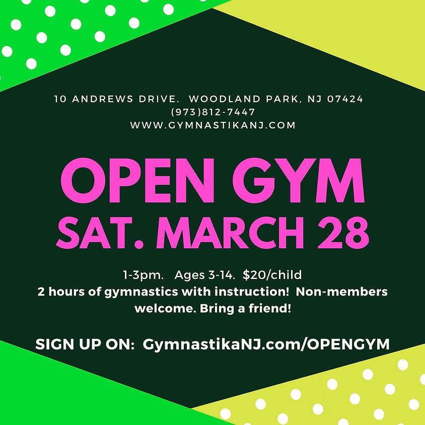Open Gym:  Saturday, March 28th