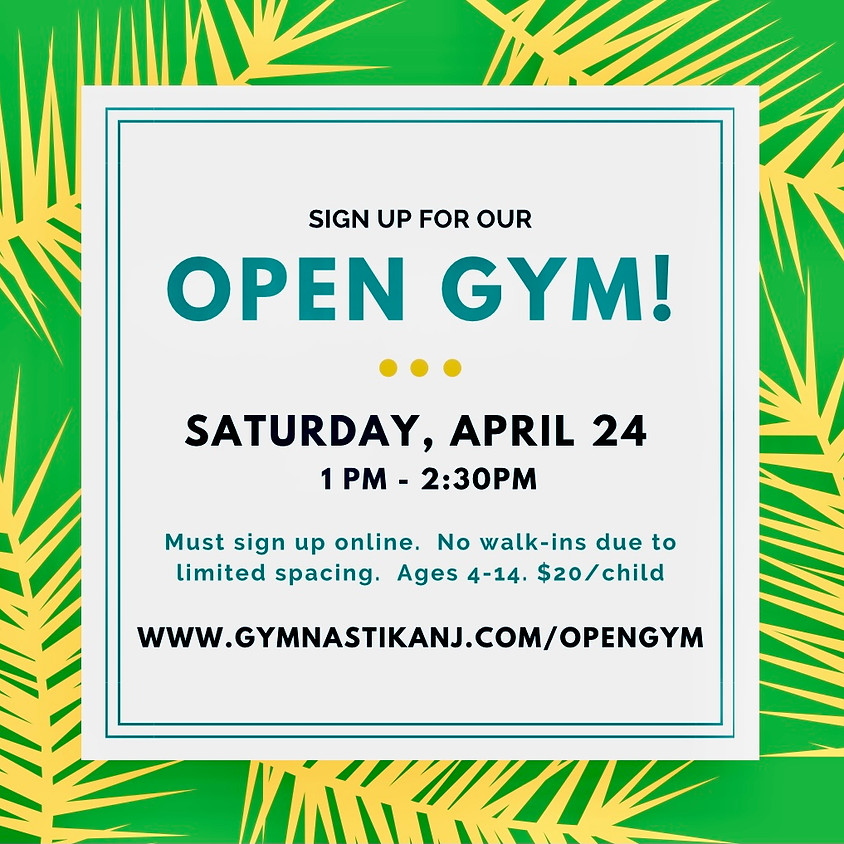 Open Gym:  Saturday, April 24th