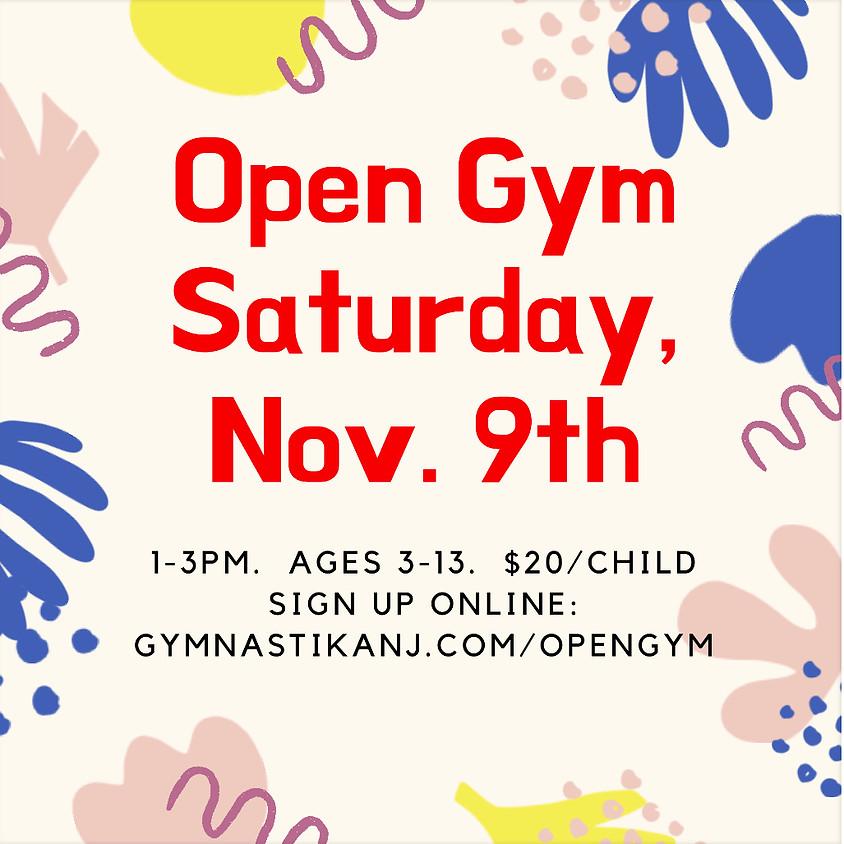 Open Gym:  Saturday, November 9th