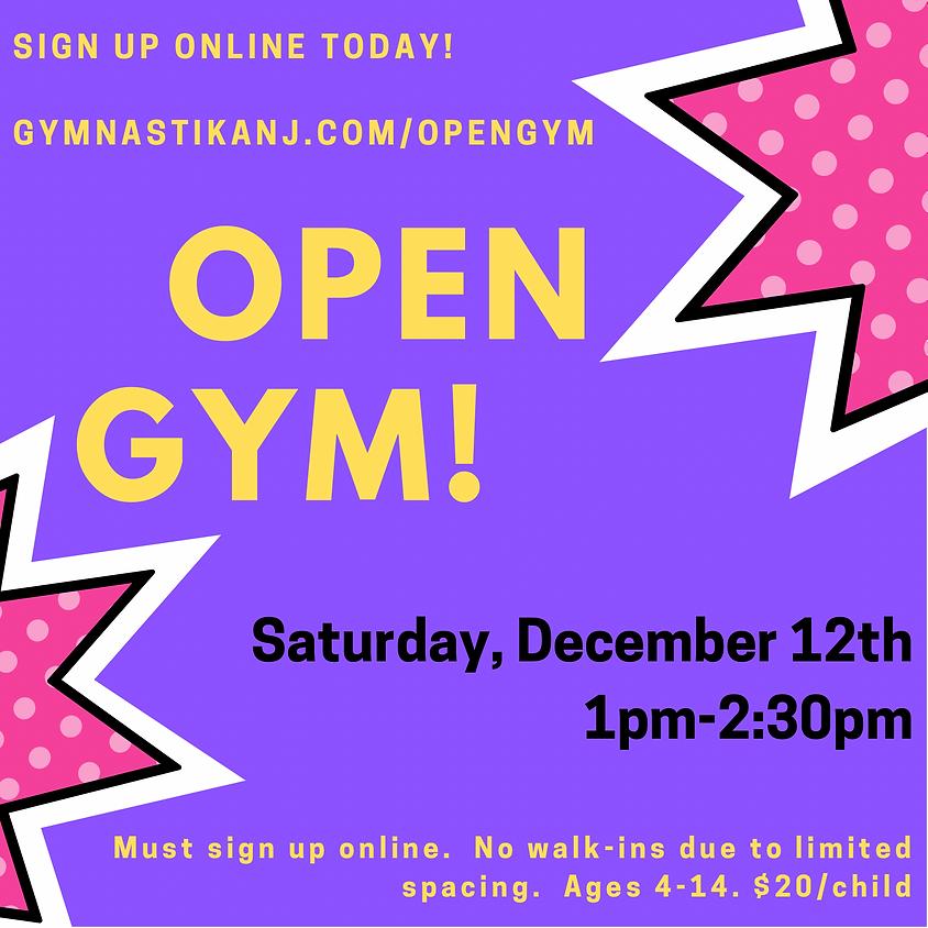 Open Gym:  Saturday, December 12th