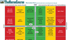 The HorseCourse Observation Chart