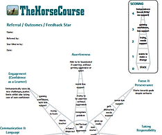 The HorseCourse Star