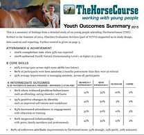 Youth Outcomes Summary Report 2015