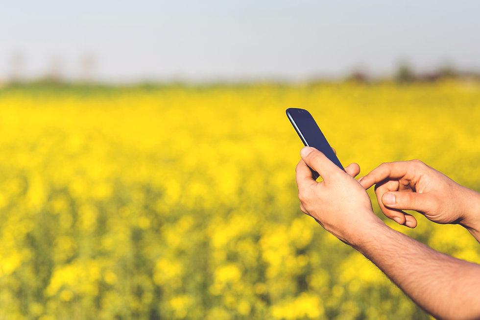 smartphone-mobile-man-grass-plant-techno