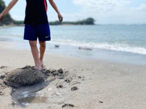 海は自然公物。遊泳自粛って?
