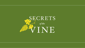 Secrets Of The Vine Web Banners-07.jpg