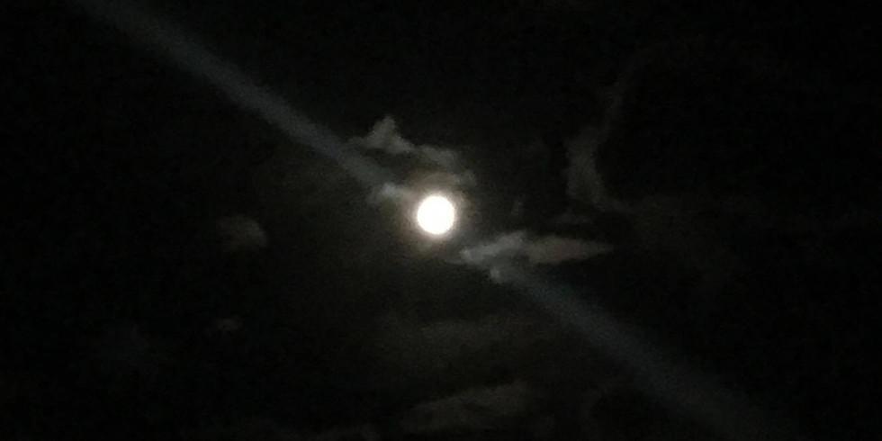 Luna Piena - Arpa Sciamanica & Campane Tibetane