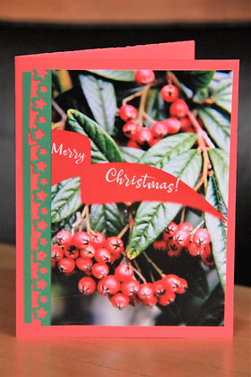 Ribbons and Berries Christmas