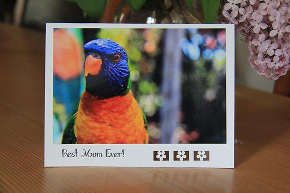 Best Mom Ever - Parrot