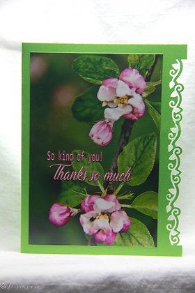 Thanks -Apple Blossoms