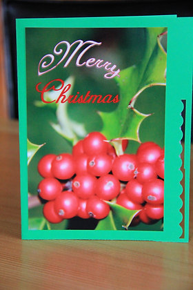 Big Red Holly Berries