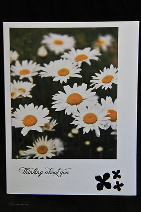 BWS - Thinking of You - Daisies