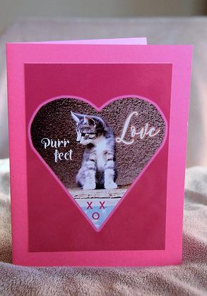 Purr-fect Love Kitten