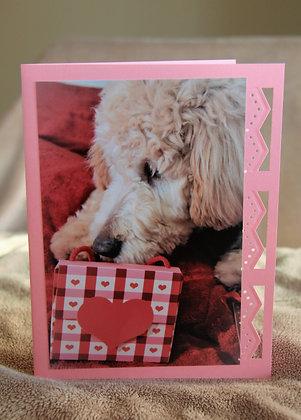 Carmella Valentines Gift
