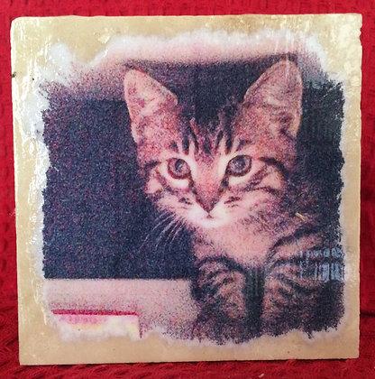 Gift Item - Tile - Kitten in Box
