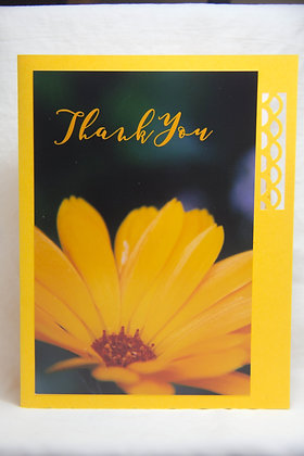 Thanks - Yellow Blossom