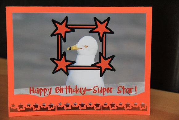 Super Star Birthday Bird