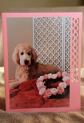 Valentine Love Pooch