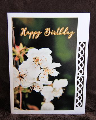 HB White Spring Blossoms