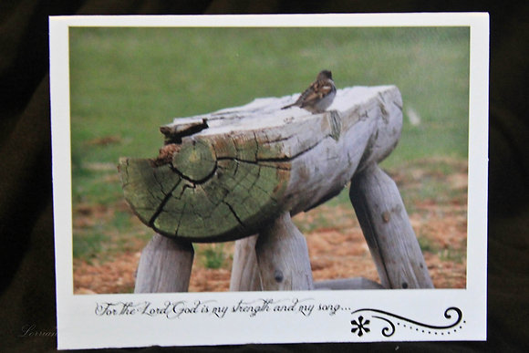 BWS - The Lord is My Song - Bird on Log Bench