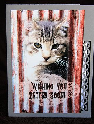 Get Well Cat
