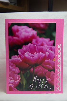 HB Pick a Pink Birthday Tulip