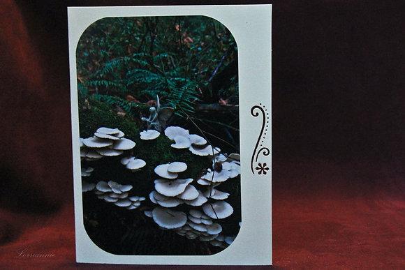Fairy Garden Forest #13 - SSC