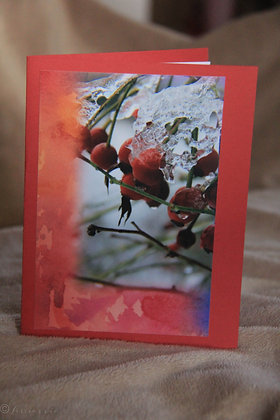 WaterColour Bkg. Ice on Rose Hips