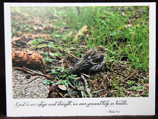 Scripture Little Sparrow: Psalm 46:1