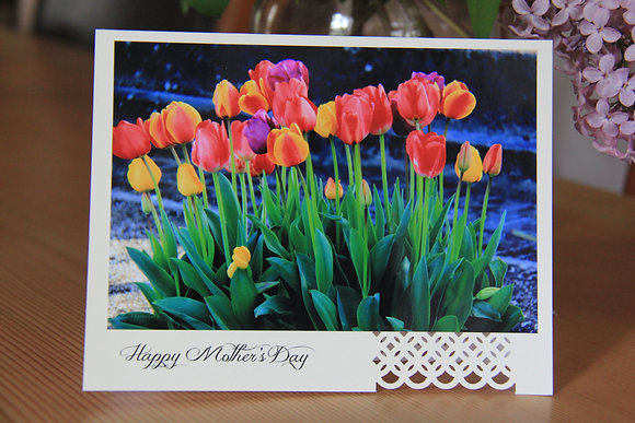 Happy Mother's Day - Coloured Tulips