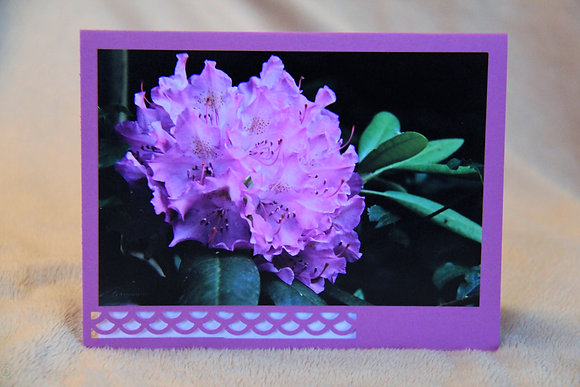 Blank - Purple Azailia Bloom