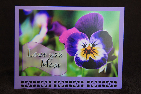 MD - Pansy Love