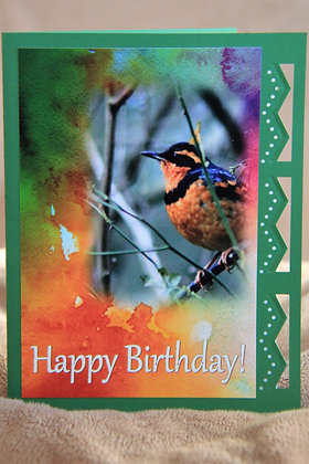 HB WaterColour Bkg. Varied Thrush Bird