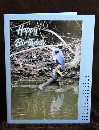 HB Blue Heron