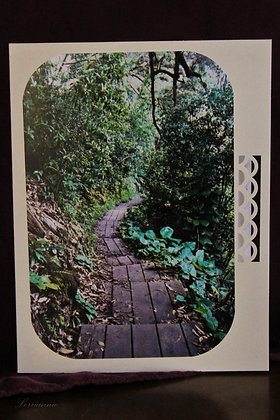 The Pathway 14 - Maui