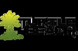 turtlebeach.png