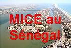 MICE au Sénégal
