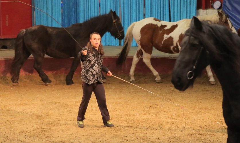 vargas-show-equestre-008
