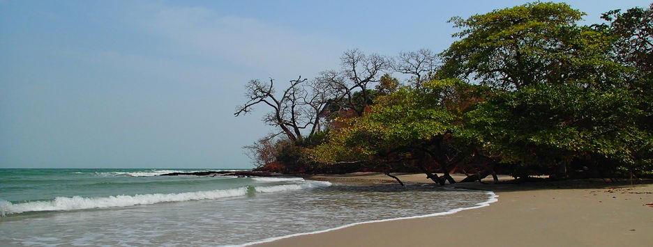 Pêche Sportive en Guinée Bissau