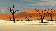 namibie-1.jpg