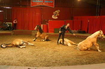 vargas-show-equestre-005