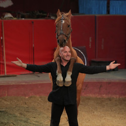 vargas-show-equestre-021