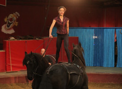 vargas-show-equestre-014