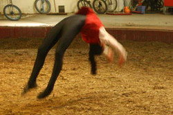 vargas-show-equestre-012