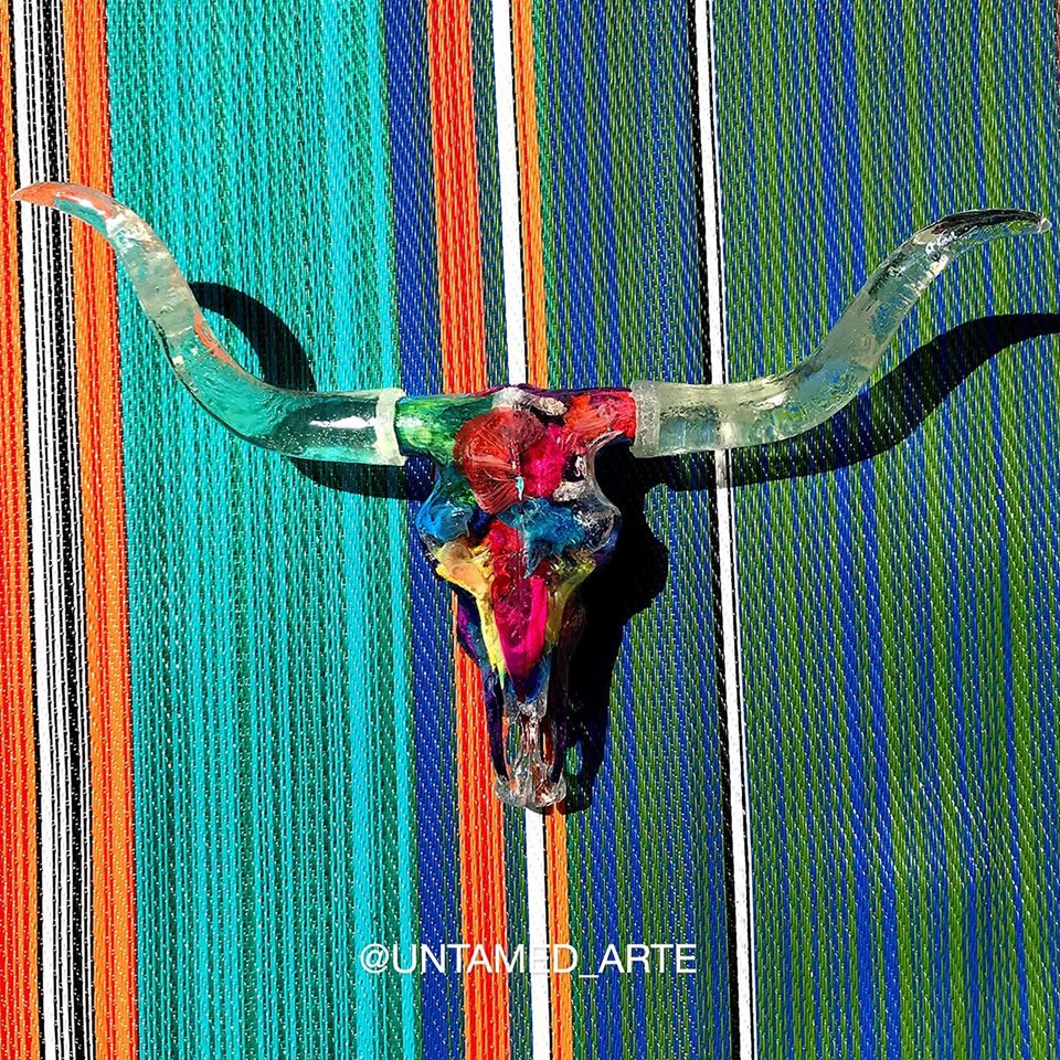 Colorful Longhorn