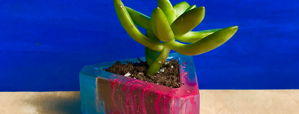 Pink and Blue Drip Pee-A-Boo Planter - Triangle