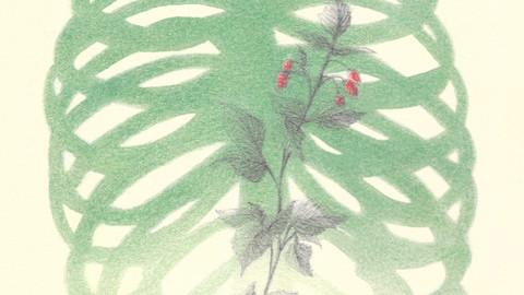 """Book cover """"Schhhh"""" M. Ghibaudo, Sillabe di sale ed."""