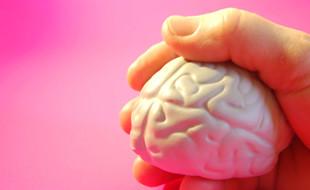CURIOSIDADE: Exercite o cérebro