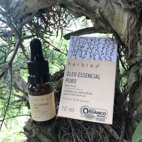 Óleo Essencial de Tea tree (Melaleuca alternifolia)  - Hérbia