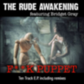 fuck puppet sleeve 1.jpg